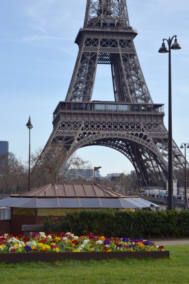Eiffel Tower from opposite Side